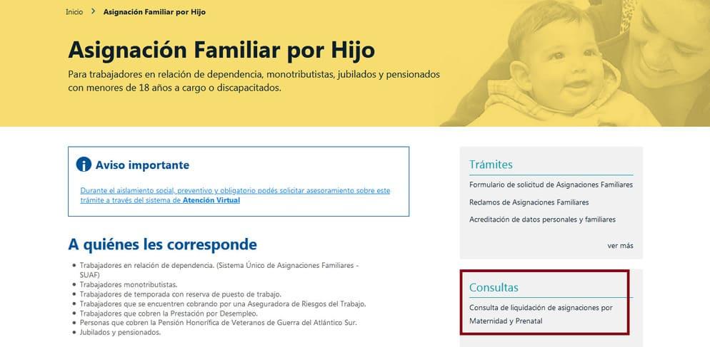 Consulta de liquidación de asignaciones por Maternidad y Prenatal